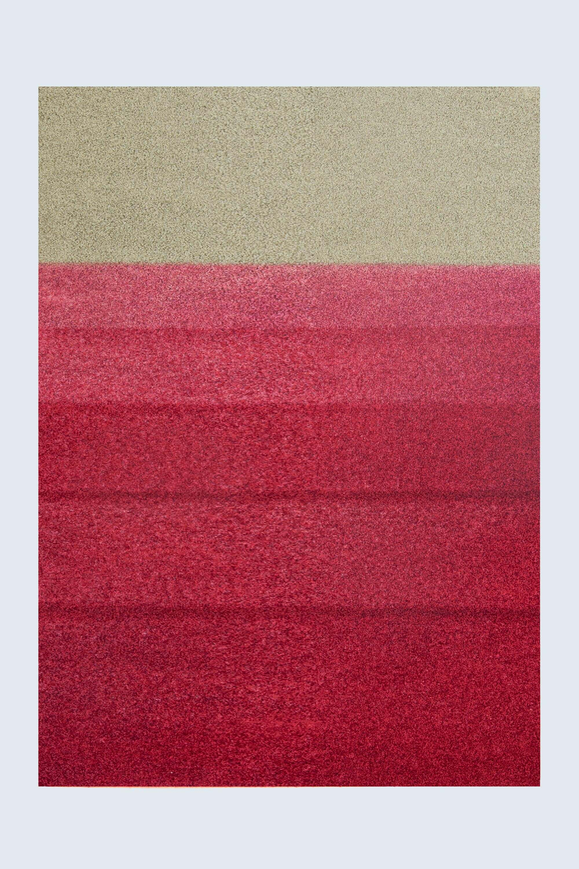 Revive Rug  </br>roxy 229